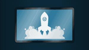 WordPress SEO- Plugins